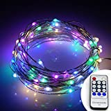Fheimin® Dimmable Led String Lights Waterproof Copper Wire 33ft LED Starry Light with UL certified 12V Power Adapter with Remote Control For Christmas Wedding and Party, suitable for indoors or outdoors (Multi-color)