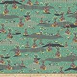 Free Spirit Fabrics Kathy Doughty Horizons Boab Plains Fabric by the Yard, Vibrant