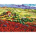 Dimensions Needlecrafts Tuscan Poppies Needlepoint Kit