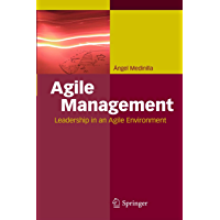 Agile Management: Leadership in an Agile Environment