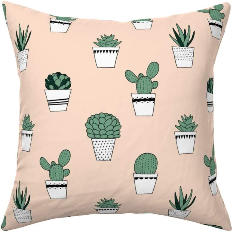 Amazon.com: Roostery Throw Pillow, Potted Succulents Boho ... on blue house plants, black house plants, prehistoric house plants, beach house plants, forest house plants, lake house plants, desert plant identification, plants house plants, sunset house plants, fruit house plants, dessert house plants, coffee house plants, jungle house plants, desert yucca plant, cactus house plants, alpine house plants, tropical house plants, prairie house plants, california house plants, river house plants,