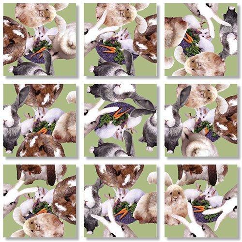 (B Dazzle Bunnies Scramble Squares 9 Piece Puzzle)