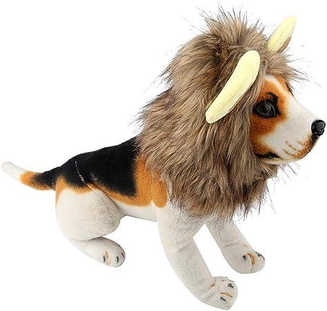 Socialme-EU Disfraz Decorativo Animal Sombrero de Perro Gorro Divertido de Invierno Estilo León Lindo Peluca de Mane Traje de Fiesta Halloween(M): Amazon.es: Hogar