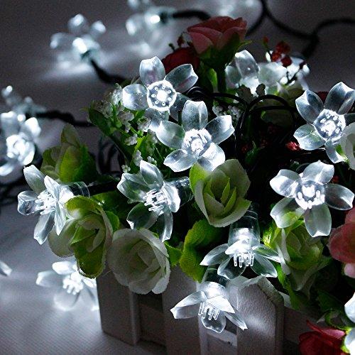 fozela-flower-outdoor-solar-string-lights-21feet-50-led-fairy-blossom-christmas-lights-decorative-li