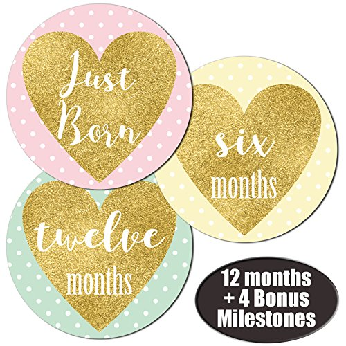 Baby Girl Heart Monthly Stickers