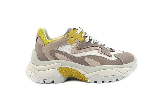 ea11cfafa34ee ASH Sneaker Addict  Amazon.it  Scarpe e borse