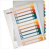 Leitz 100214 - Pack de 10 indices imprimibles