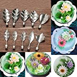 Coolrunner 11Pcs 3D Jelly Art Tools Jelly Cake Jello Aart Gelatin Tools for Decor Pudding Nozzle Syringe Set Russian Nozzles