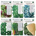 Leafy Greens and Lettuce Certified Organic Seeds Variety Pack - Wild Lettuce, Romaine, Arugula, Rainbow Swiss Chard, Heirloom Spinach and Heirloom Kale Vegetable Garden Seeds for Planting