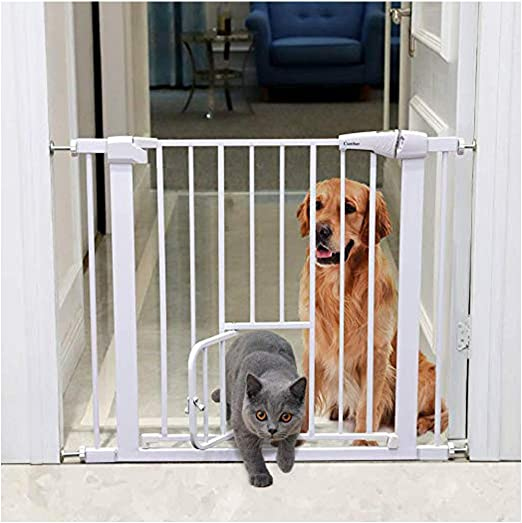 Puerta De Bebé Puertas For Bebés Con Gatos La Puerta Es Una Escalera Puerta De Aislamiento