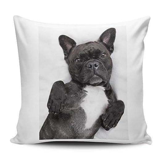 Funda de cojín/almohada de 40 x 40 cm - Diseño: Bulldog ...