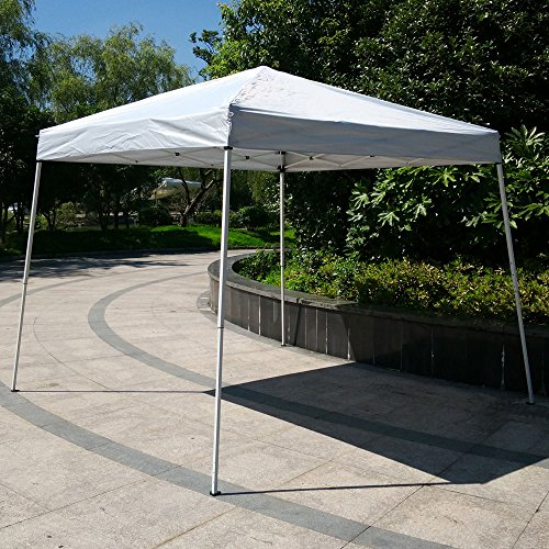 Alightup 10X10 Ft Outdoor Pop Up Wedding Party Tent Portable Folding Gazebo Canopy Sun Shelter