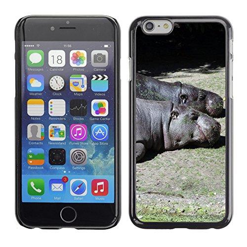 "Premio Sottile Slim Cassa Custodia Case Cover Shell // F00010683 hippopotame // Apple iPhone 6 6S 6G 4.7"""