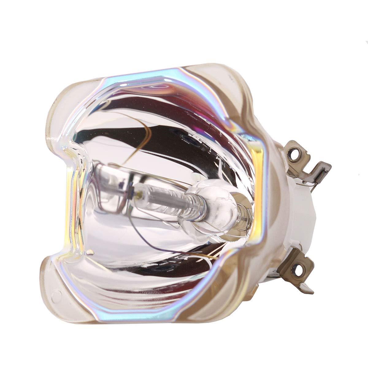 LYTIO エコノミー Barco R9832774 プロジェクターランプ用 (電球のみ)   B07JWGSVKG