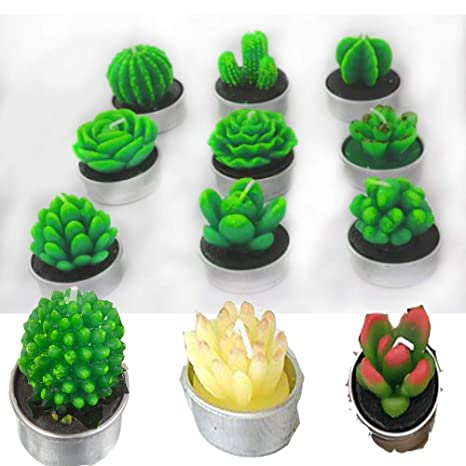 Amazon.com: Cactus - Juego de 12 velas de velas de té hechas ...