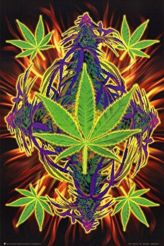 Flaming-Leaf-Pot-Marijuana-Art-Print-Poster-Poster-Poster-Print-24x36