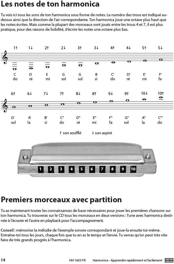 Set blues arm/ónica con manual en franc/és Cascha HH 1600 FR