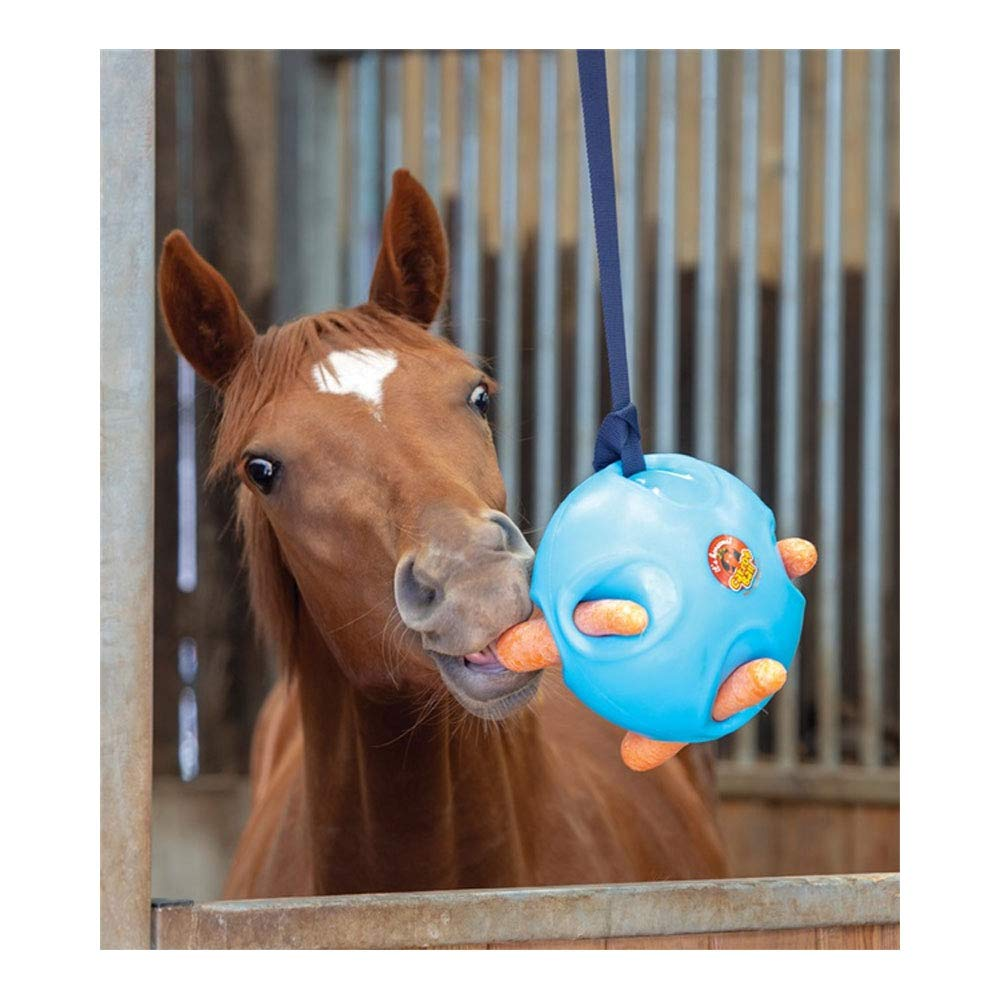 Carrot Ball Equine Horse Feeder Play Toy Fun Entertainment by Carrot Ball