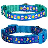 "Blueberry Pet Pack of 2 Collars for Dogs, Neck 12""-16"", Sunny and Starry Small Dog Collar"