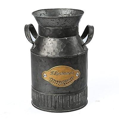 Nordic Flower Pot Fake Flower Fleshy Old Retro Floor-standing Vase Iron Dried Flower: Musical Instruments