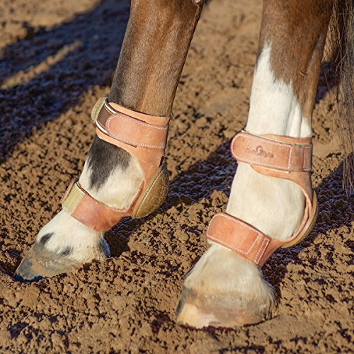 CLASSIC EQUINE ★ HEAVY DUTY PERFORMANCE SKID BOOTS ★ HOOK AND LOOP by Classic