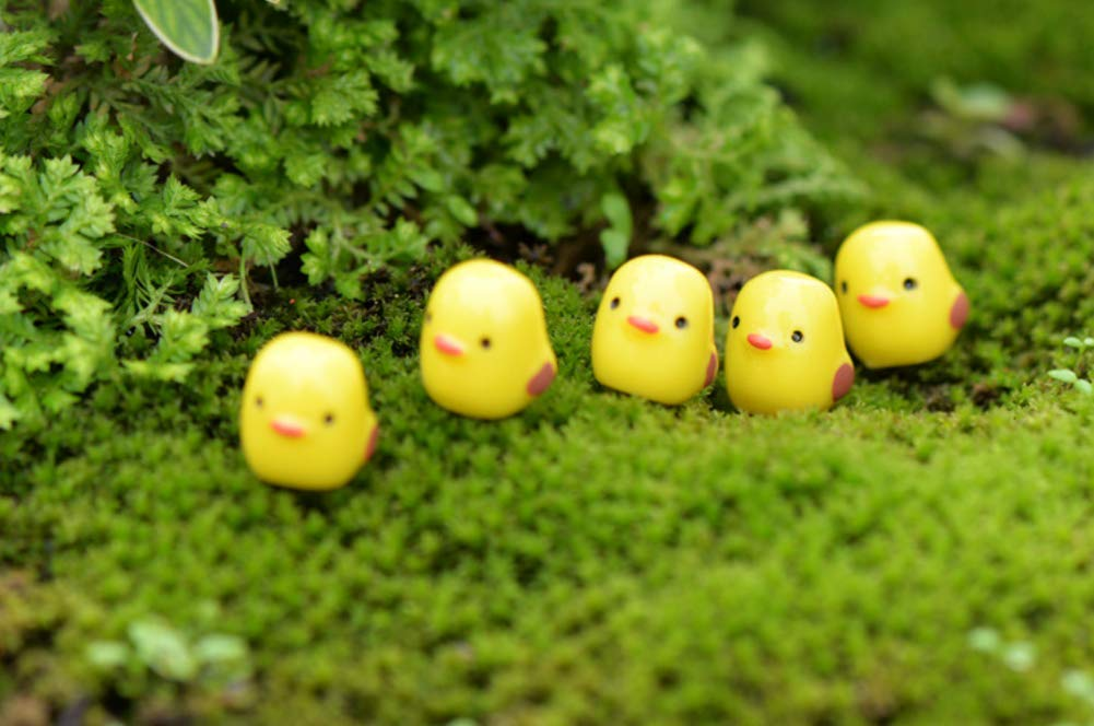 IccBox Miniature Fairy Garden Figurines Chicken Toy Figure Cake Topper Micro Landscape Resin 30 Pcs Set D/écor for Home Garden Decoration