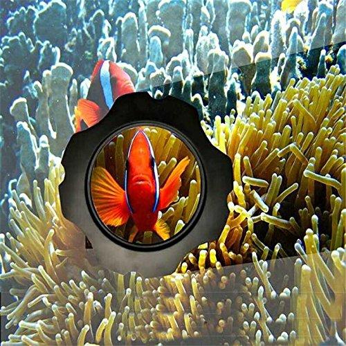 Terrarium Cleaner Terrarium (Aquarium Fish Tank 2 in 1 Magnetic Algae Glass Cleaner Scraper Floating Brush Aquatic Terrarium Fish Tank Cleaning Tool Supplies)