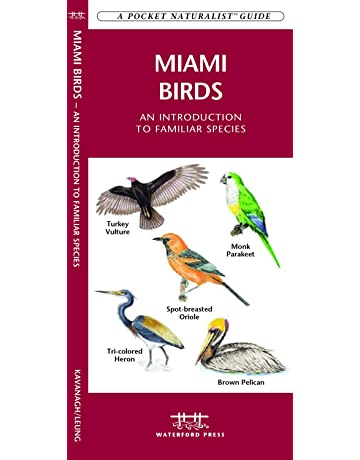 Miami Birds: A Folding Pocket Guide to Familiar Species (A Pocket Naturalist Guide)
