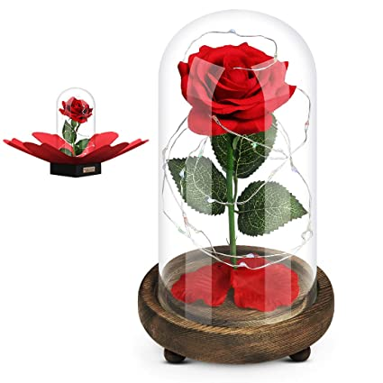 Amazoncom Sweet Diary Beauty And The Beast Artificial Flowers Red