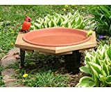 2 PACK Classic 17 Garden Bird Bath