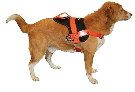 Fusion Mass Raider - Arnés de Entrenamiento para Perro, tamaño ...