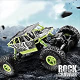 1/18th Scale Electric Hot RC Vehicle Toy 4WD 4X4 Powerful Electric Remote ...