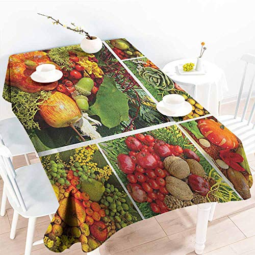 familytaste Harvest,Outdoor Tablecloth Photograph of Products from Various Gardens and Fields Seasonal Foods Apple Walnuts 60