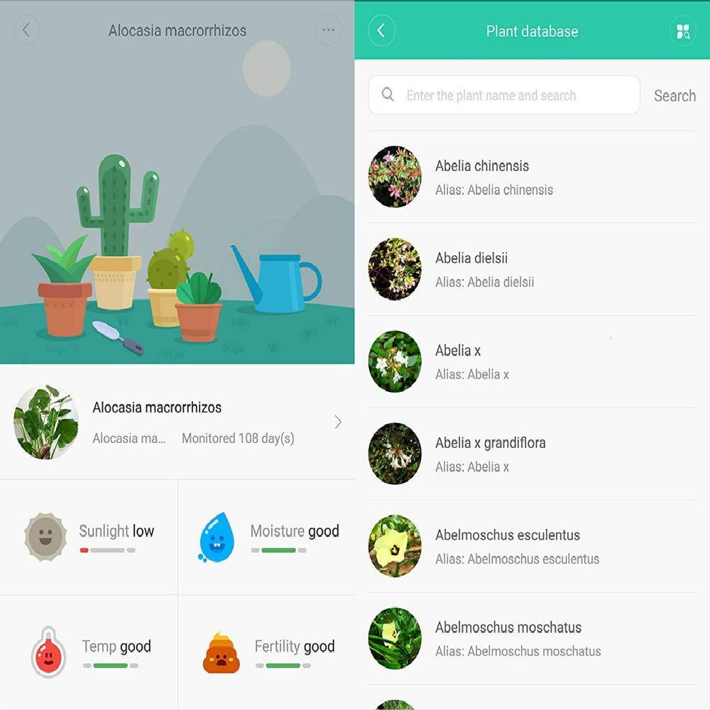 Vistefly Plant Flower Care Echtzeit Sensoren Internationale Version Pflanzen Pflanze 4 in 1 Temperatur Luftfeuchtigkeit D/ünger Helligkeit Wasserdicht Bluetooth IOS//Apple App