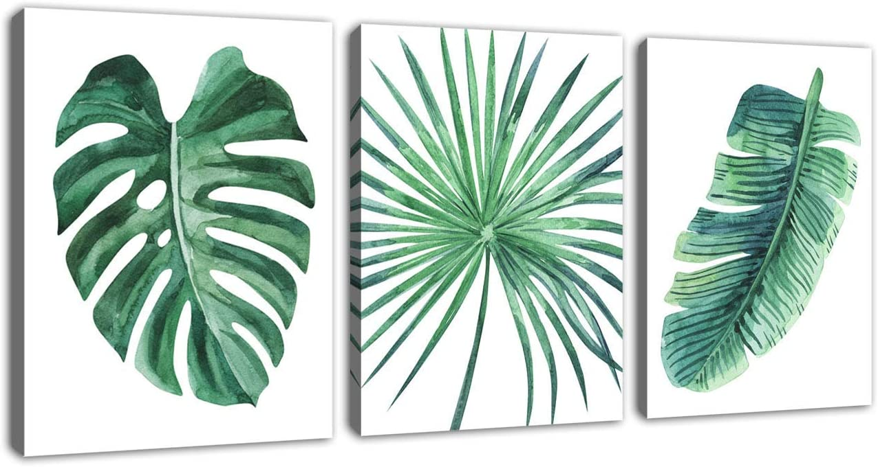 Amazon Com Green Leaf Wall Art Tropical Plants Pictures Wall Decor Simple Life Canvas Artwork 3 Pieces Contemporary Canvas Art Minimalist Watercolor Painting Monstera Palm Banana Leaves For Bathroom Living Room Bedroom Wall Polish your personal project or design with these tropical leaves transparent png images, make it even more personalized and more attractive. green leaf wall art tropical plants pictures wall decor simple life canvas artwork 3 pieces contemporary canvas art minimalist watercolor painting