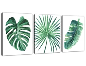 Green Leaf Wall Art Tropical Plants Simple Life Picture Artwork, 3 Pieces Contemporary Canvas Art Minimalist Watercolor Painting of Monstera Palm Banana Wall Decor for Bathroom Living Room Bedroom