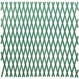 Papillon - Traliccio Porta Piante E Fiori Estensibile Colore Verde 2X1 Mt