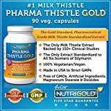 NutriGold Milk Thistle Extract – Pharma Thistle GOLD, 30 to 70:1 Extract with 80% Silymarin (#1 Pharmaceutical Grade Liver Support Supplement for Liver Detox and Cleanse)90 Vegetarian Capsules, Health Care Stuffs