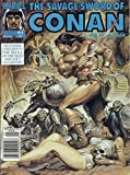 img - for The Savage Sword of Conan the Barbarian, No. 193 book / textbook / text book