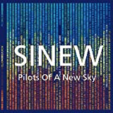 Pilots of the New Sky