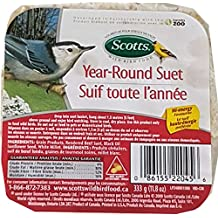 Hi-Energy Suet Wild Bird Food (Bundle of 2)