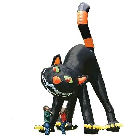 Amazon.com: 20 ft Animated gigante hinchable gato negro de ...