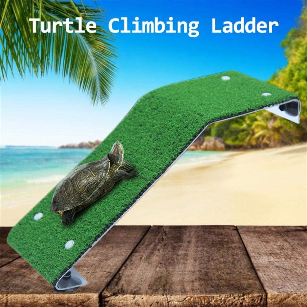 Turtle Basking Platform Rampa di tartaruga Rettile Serbatoio Scaletta Terrazza di riposo Turtle Basking Platform