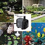 Ankway Upgraded 160GPH(600L/H, 10W) Submersible