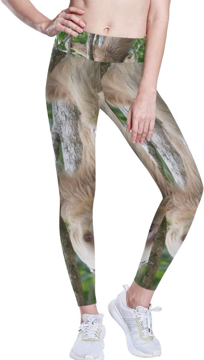 FANTAZIO Perezoso en Costa Rica Pantalones de yoga de cintura alta, control de barriga, yoga, capris para mujeres, 4 vías elásticos, capri