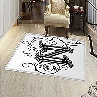 Letter Z Area Rug Carpet The Last Letter The Alphabet in Calligraphic Design Z Symbol Curls Swirls Living Dining Room Bedroom Hallway Office Carpet 3x5 Black Grey White