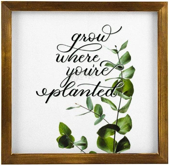 """yyone Grow Where You're Planted - Home Door, Farmhouse Wall Door, Housewarming Gift, Home Framed Wooden Sign Square Wooden Sign 12"""" X 12"""""""