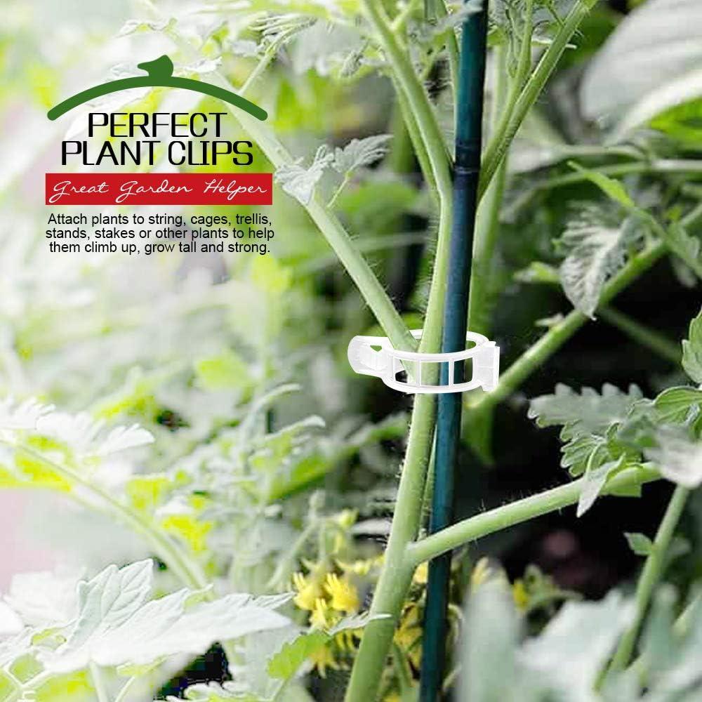 Plant Ties for Tomato Cucumber Flower Squash Vine Plastic Garden Plant Support Clips Trellis Clips FANDAMEI 150 PCS Tomato Clips