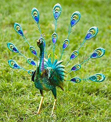 Peacock Metal Outdoor Garden Accent Sculpture with Feathers Up, 9.75 L x 6 W x 17.75 H (Peacock Metal Statue)