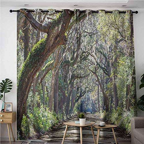 Willsd Doorway Curtains,Nature Road in The Forest with Trees Botany South Carolina National Park Eco Picture,Blackout Draperies for Bedroom,W84x108L,Fern Green Umber]()